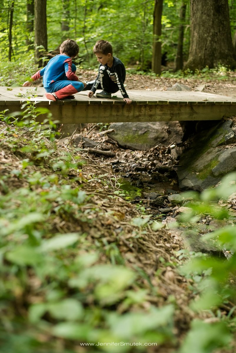 patapsco valley state park camping