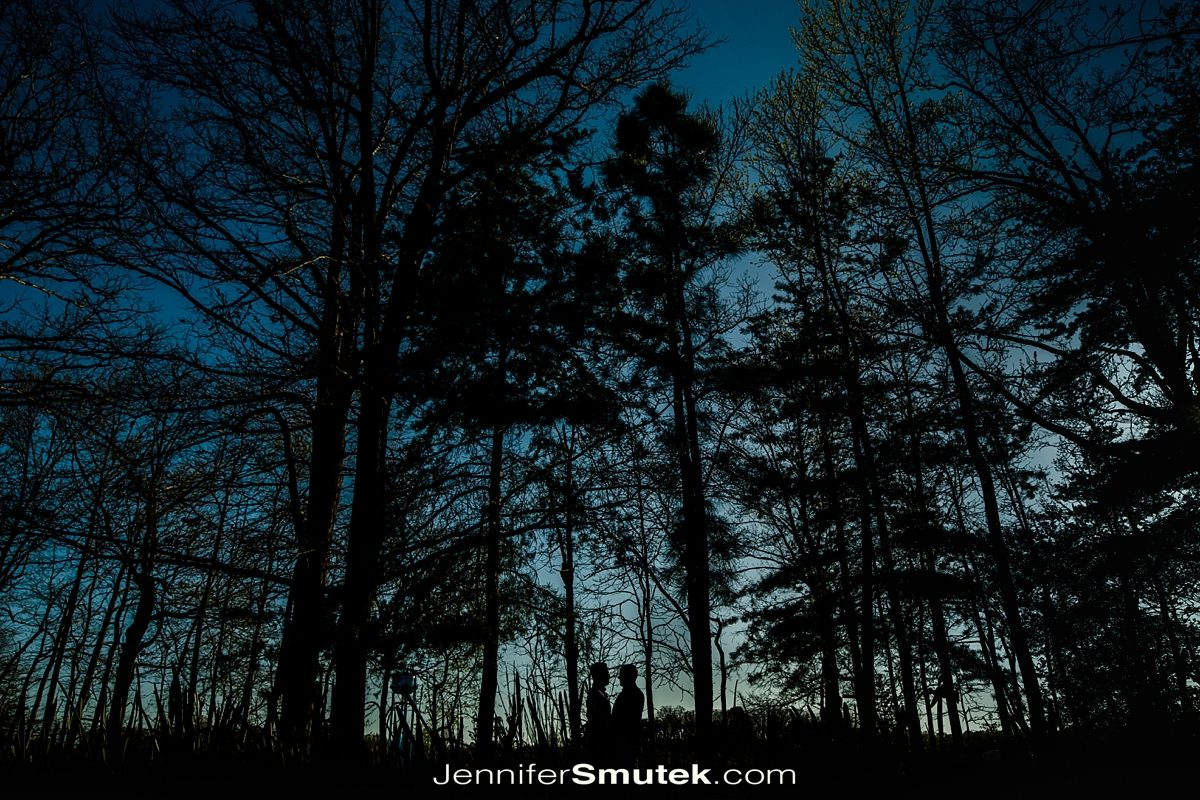 color silhouette of trees and people