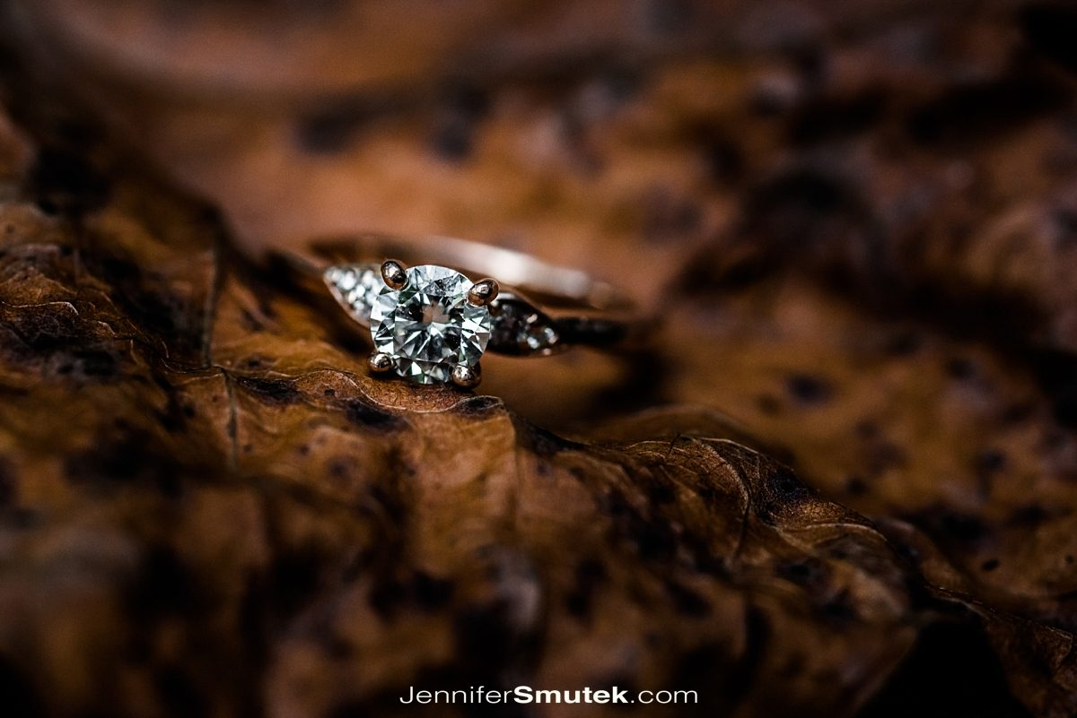 macro ring photography