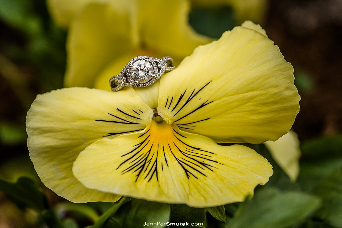 close up of engagement ring on a yellow flower in maryland